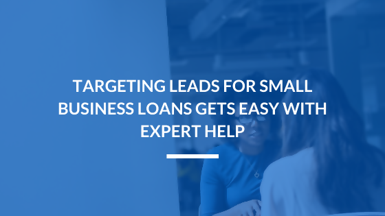 Targeting Leads for Small Business Loans is Easy with Professional Help
